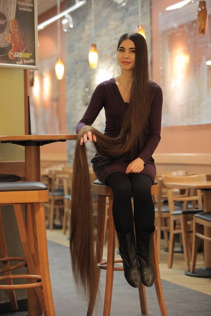 Aliia Nasyrova holding her 90 inch hair up on March 5, 2017 in Riga, Latvia. (Photo by  Eduard Kolik/Barcroft Media)