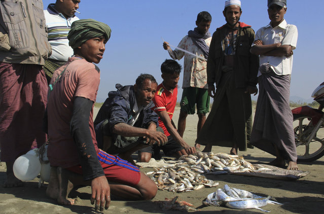 In this January 16, 2017, photo, Rohingya fishermen sell fish caught from makeshift rafts made from recycled plastic containers in Maungdaw, western Rakhine state, Myanmar. (Photo by Esther Htusan/AP Photo)