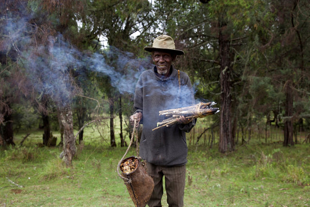 A man from Ogiek community harvests honey in Mount Elgon game reserve, where they have reached an agreement with the government allowing them to remain in their ancestral lands in western Kenya, April 26, 2016. (Photo by Katy Migiro/Reuters)