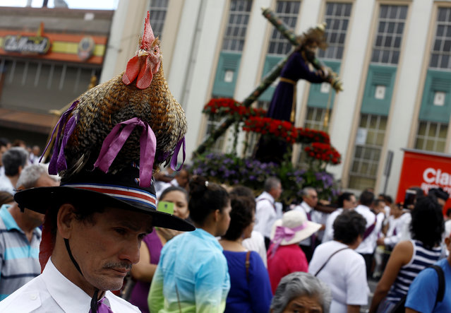 "Martin Herrera, walks with his favourite rooster ""Paquito"" during procession of Holy Week in San Jose, Costa Rica April 27, 2017. (Photo by Juan Carlos Ulate/Reuters)"