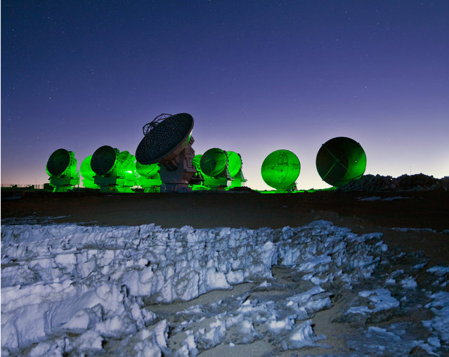 Sitting amongst the alien landscape of the harsh Atacama, the antennas of the Large Millimeter/submillimeter Array (ALMA) look eerily otherworldly in this ESO Picture of the Week as they are bathed in a neon green light. This light is actually an in-built function of ALMA, not evidence of alien activity! The array's antennas have a flashing green light that blinks periodically whilst the antennas are in operation, and does not disturb the radio-wavelength observations. This light is not usually quite so visible – this picture was captured using a 10-second exposure, during which time a green flash occurred and spread throughout the image, creating a stark contrast between the neon green of the antennas and the deep blue of the night sky. Jagged ice formations known as penitentes can be seen in the foreground. These form at high altitudes where the low pressure and cold temperatures cause an unusual freezing and melting cycle. Penitentes form in a wide range of sizes, from a couple of centimetres up to around five metres. The ones in this picture are fairly small, measuring less than a metre. May 8, 2017. (Photo by Sigurd Fandango/ESO)