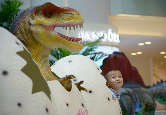 A Chinese boy looks at a dinosaur model as he prepares to pose for a photo mall in Beijing on August 6, 2014.  China is to scrap the distinction between its urban and rural household registration systems, it said, promising migrant workers greater social benefits as it pushes an urbanisation drive that has seen hundreds of millions of people move to cities. (Photo by Wang Zhao/AFP Photo)