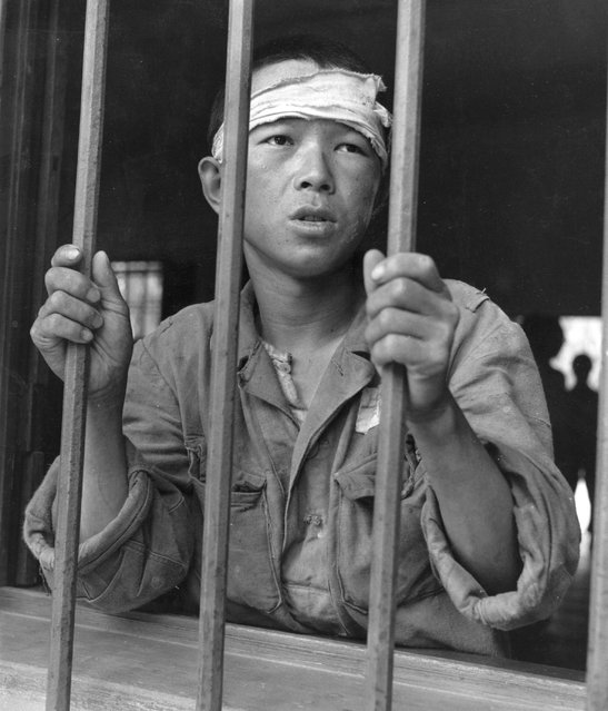 A prisoner staring through the bars at Taegu POW camp in Korea, 1950. (Photo by Picture Post)