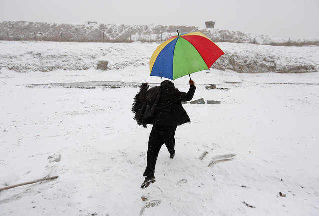 A man walks with an umbrella on a snowy day in Kabul, Afghanistan January 14, 2017. (Photo by Mohammad Ismail/Reuters)