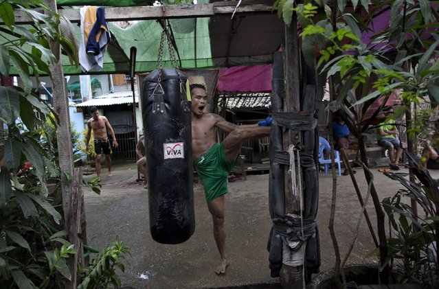 In this Tuesday, July 14, 2015, photo, Dawna Aung, a member of the White New Blood lethwei fighters club, a Myanmar traditional martial-arts club which practices a rough form of kickboxing, kicks a pole covered in used tires during a practice session in their gym on a street in Oakalarpa, north of Yangon, Myanmar. Dawna Aung, a 34-year-old father of two, hopes competing will help him change his family's life. (Photo by Gemunu Amarasinghe/AP Photo)