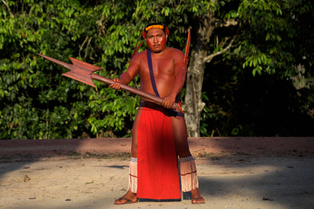 A Waiapi man poses for a picture with his wooden Borduna during the Anaconda's party -during which they make flutes to play and dance, and at the end leave all flutes on the river for the Anaconda snake to protect their village- in the Waiapi indigenous reserve in Amapa state in Brazil on October 14, 2017. (Photo by Apu Gomes/AFP Photo)