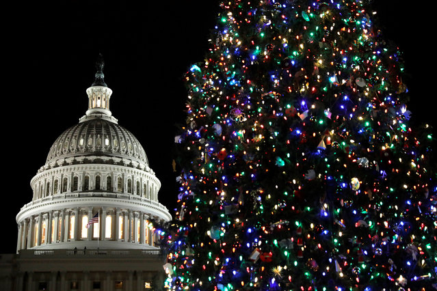 The Capitol Christmas Tree, the 79-foot-tall Engelmann Spruce which was grown in Montana, is lit on West Front Lawn of the U.S. Capitol in Washington, U.S., December 6, 2017. (Photo by Yuri Gripas/Reuters)