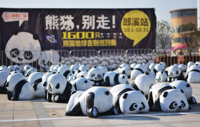 Varied panda sculptures are seen in front of a shopping mall on November 3, 2014 in Xuancheng, Anhui province of China. An exhibition of about 1600 panda sculptures is held to attract customers for a shopping mall on November 3 in Xuancheng. (Photo by ChinaFotoPress/Getty Images)
