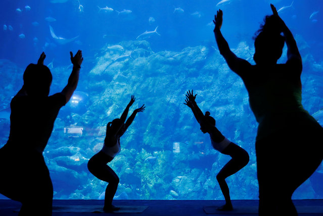 Participants take part in a yoga class at Ocean Park's aquarium, as a new activity to attract visitors amid a drop in tourists due to the coronavirus disease (COVID-19) outbreak, in Hong Kong, China on October 8, 2020. (Photo by Tyrone Siu/Reuters)