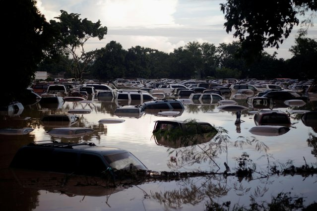 Vehicles are submerged at a plot flooded by the Chamelecon River due to heavy rain caused by Storm Iota, in La Lima, Honduras on November 19, 2020. (Photo by Jorge Cabrera/Reuters)