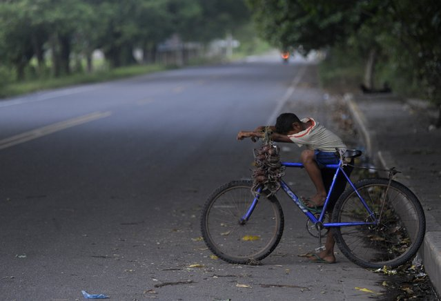 A boy rests his head on his bicycle while waiting for customers to buy his crabs on a street in Cedeno, 150 km (93 miles) south of Honduras September 12, 2012. (Photo by Jorge Cabrera/Reuters)