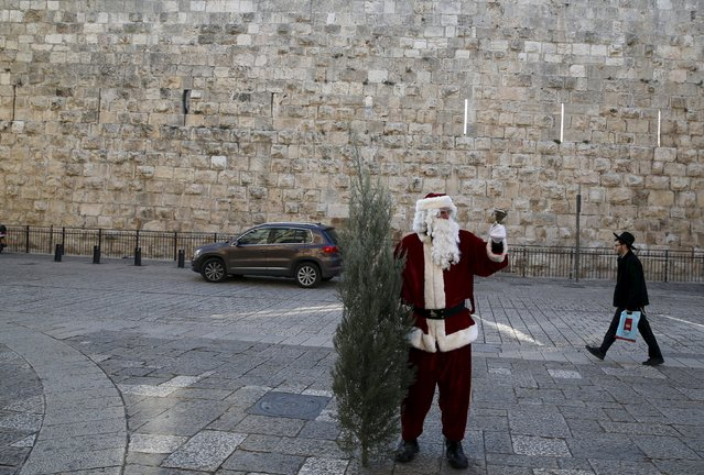Israeli-Arab Issa Kassissieh wears a Santa Claus costume as he holds a bell and a Christmas tree during the annual distribution of Christmas trees by the Jerusalem municipality just outside Jerusalem's Old City December 21, 2015. (Photo by Ammar Awad/Reuters)