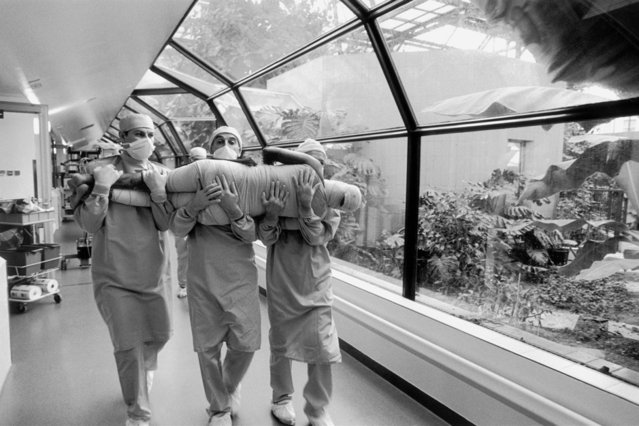 2000 Visa d'or Feature: Raphael Gaillarde. In the Percy military hospital in Clamart (Hauts-de-Seine), the medical team seizes a patient to take him back to his isolated sterile room after having been treated in the emergency ward, France, March 1999. (Photo by Raphael Gaillarde/Gamma)