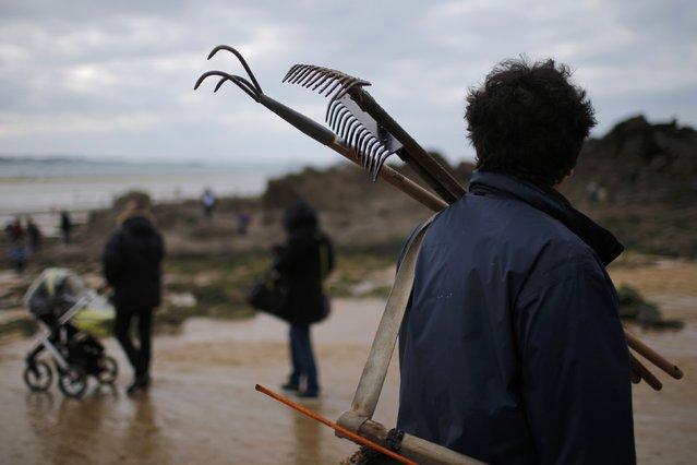 A man carries tools to dig for shellfish during a record low tide in Saint Malo, western France, March 21, 2015. (Photo by Stephane Mahe/Reuters)