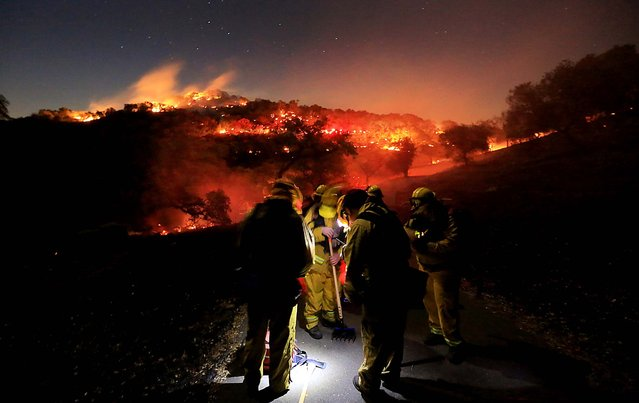Firefighters from Schell Vista of Sonoma County and Santa Clara County Cal Fire prepare to put out hotspots on a fire in the hills of Soda Canyon above Napa, on November 22, 2013. The fire grew to over 300 acres by daybreak, fanned by high winds. (Photo by Kent Porter/Santa Rosa Press Democrat)