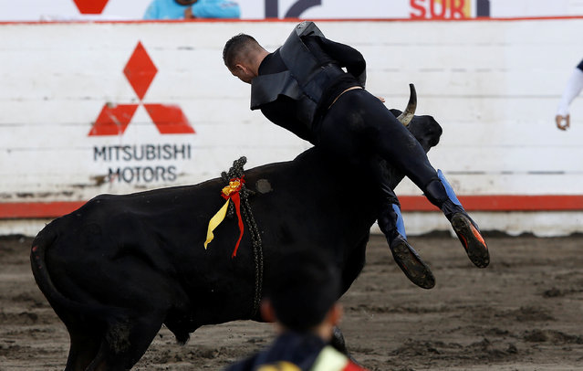 """A bull tosses a participant up in the air during a traditional bullfighting festival called """"Toros a la tica"""" in San Jose, Costa Rica January 6, 2017. (Photo by Juan Carlos Ulate/Reuters)"""