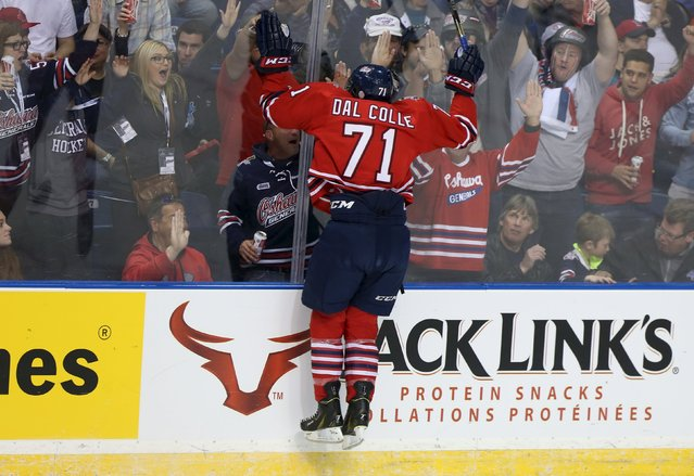 Oshawa Generals Michael Dal Colle (71) celebrates his goal during first period Memorial Cup hockey action against Rimouski Oceanic in Quebec City, March 23, 2015. (Photo by Christinne Muschi/Reuters)