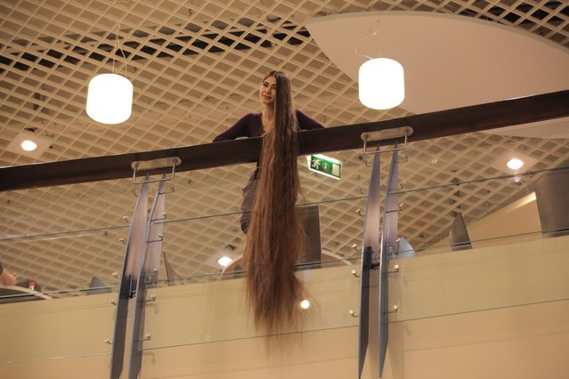 Aliia Nasyrova hanging her 90 inch hair Rapunzel style on March 5, 2017 in Riga, Latvia. (Photo by  Eduard Kolik/Barcroft Media)