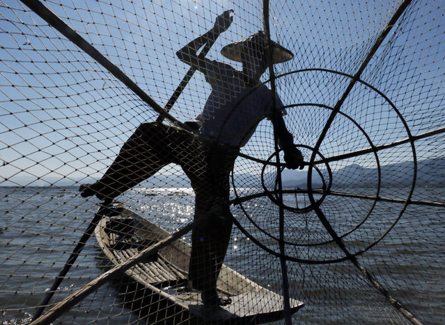 In this Friday, February 10, 2017, photo, an ethnic Inntha fisherman gathers his net on the Inle Lake, southern Shan State, Myanmar. (Photo by Thein Zaw/AP Photo)