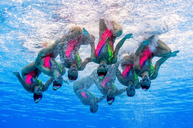 This picture taken with an underwater camera shows team France competing in the Women's  Team Free Routine preliminary during the synchronised swimming competition at the 2017 FINA World Championships in Budapest, on July 19, 2017. (Photo by Francois-Xavier Marit/AFP Photo)