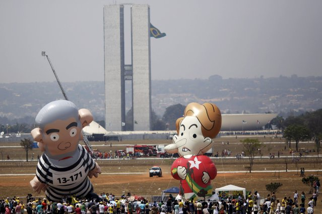 Giant inflatable dolls depicting former Brazilian President Luiz Inacio Lula da Silva (L), in prison attire, and Brazil's President Dilma Rousseff are seen during a protest against Brazil's President Rousseff and the Workers' Party in Brasilia, Brazil, September 7, 2015. (Photo by Ueslei Marcelino/Reuters)
