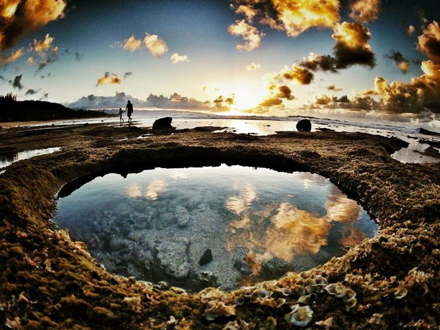 """Still life of a tide pool by Dune Newhouse. Gavin Beschen and his daughter adventure around the tides pools of Rocky Point at sunset"". (Photo by Dune Newhouse)"