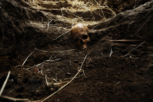 In this photo taken on July 19, 2014, the skull of Perfecto de Dios killed in 1950 at the age of 19 is partially visible during his exhumation from a hidden grave in Chaherrero, Spain. (Photo by Daniel Ochoa de Olza/AP Photo)