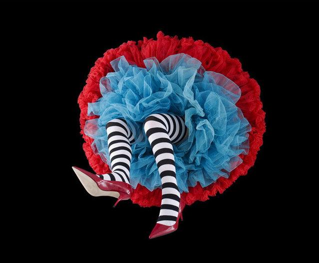 Crinoline Flowers By Daryl Banks