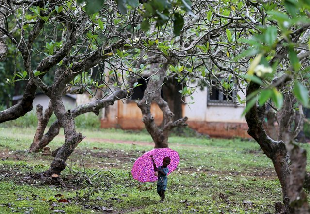 An internally displaced boy walks with an umbrella in the rain in Bambari, Central African Republic, October 17, 2015. (Photo by Goran Tomasevic/Reuters)