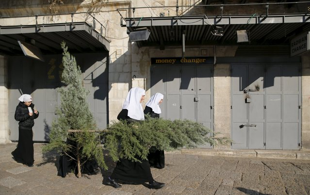 Nuns carry Christmas trees, which were distributed by the Jerusalem municipality as part of an annual event, in Jerusalem's Old City December 21, 2015. (Photo by Ammar Awad/Reuters)