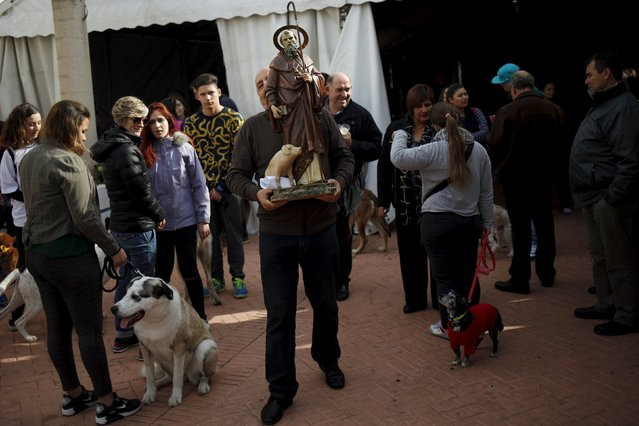 A man carries a statue of San Anton after pets were blessed by a priest in Benalmadena, near Malaga, Spain, January 17, 2016. (Photo by Jon Nazca/Reuters)