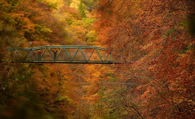 People stop on a bridge over the river Garry to view the autumn scene near Killiecrankie, Scotland, October 28, 2013. (Photo by Russell Cheyne/Reuters)