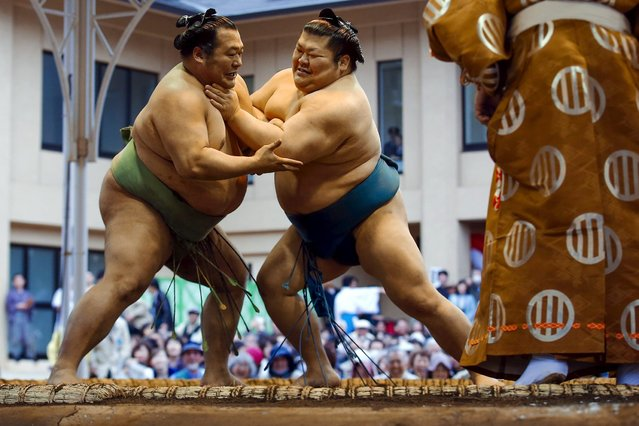 "Sumo wrestlers compete during the ""Honozumo"" ceremonial sumo tournament at the Yasukuni Shrine in Tokyo April 3, 2015. (Photo by Thomas Peter/Reuters)"