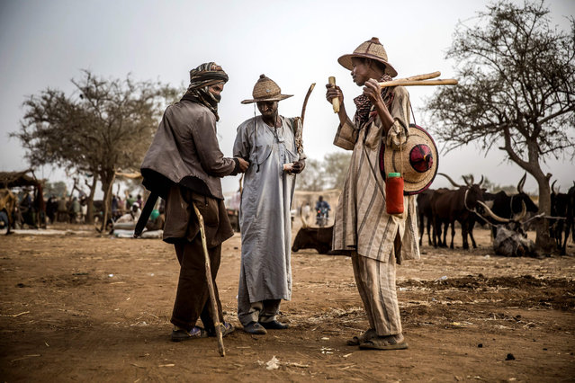 A group of Fulani pastoralist men exchange money after cattle transactions at Illiea Cattle Market, Sokoto State, Nigeria, on April 21, 2019. Illiea is the last Nigerian town before Niger's border and the cattle market is one of the largest of West Africa receiving pastoralist nomads from several countries in the region. (Photo by Luis Tato/AFP Photo)