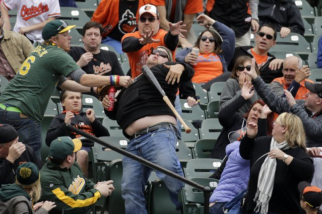 Fans clamor for a flying bat that Baltimore Orioles' Joey Rickard lost hold of during an at-bat in the fifth inning of the first baseball game of a doubleheader against the Oakland Athletics in Baltimore, Saturday, May 7, 2016. (Photo by Patrick Semansky/AP Photo)