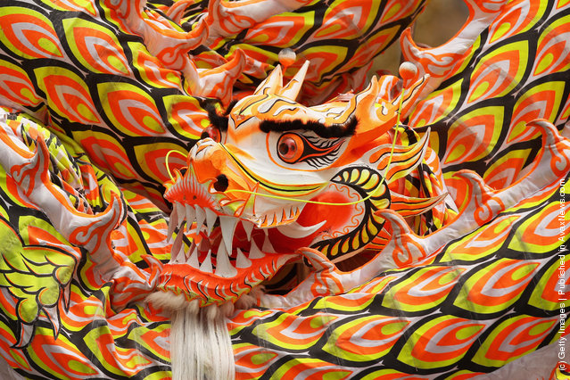 The dragon of the Australian Yau Kung Mun Martial Arts Association is seen as they perform a dragon dance during a Sydney FC AFC Champions League appearance in Martin Place