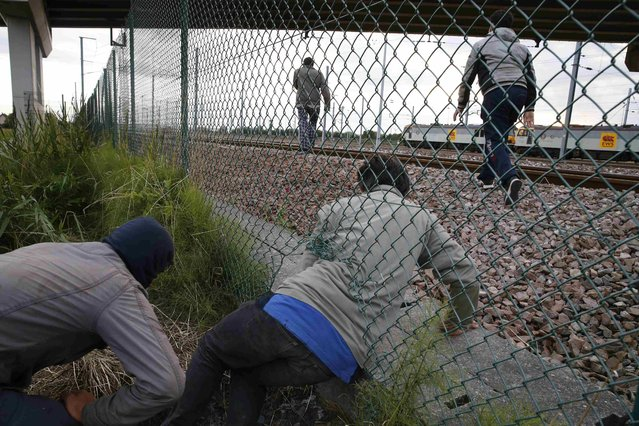 Migrants make their way through a hole ina fence near near train tracks as they attempt to access the Channel Tunnel in Frethun, near Calais, France, July 29, 2015. A migrant died trying to cross to Britain from France early on Wednesday, French police said, adding to a number of recent deaths in the Channel Tunnel as British ministers and security chiefs were to meet over the crisis in Calais. (Photo by Pascal Rossignol/Reuters)