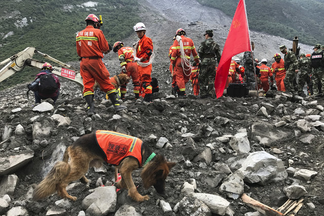 In this Sunday, June 25, 2017, file photo, rescuers with sniffer dogs stand near earthmoving equipment digging at the site of a landslide in Xinmo village in Maoxian County in southwestern China's Sichuan Province. Crews searching through the rubble left by a landslide that buried a mountain village under tons of soil and rocks in southwestern China found bodies, but many others remained missing. (AP Photo/Ng Han Guan, File)