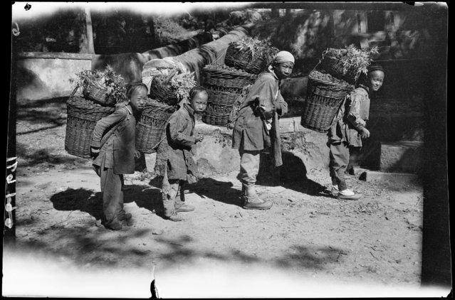 Nut Boys. China, Tanzhesi, 1917-1919. (Photo by Sidney David Gamble)