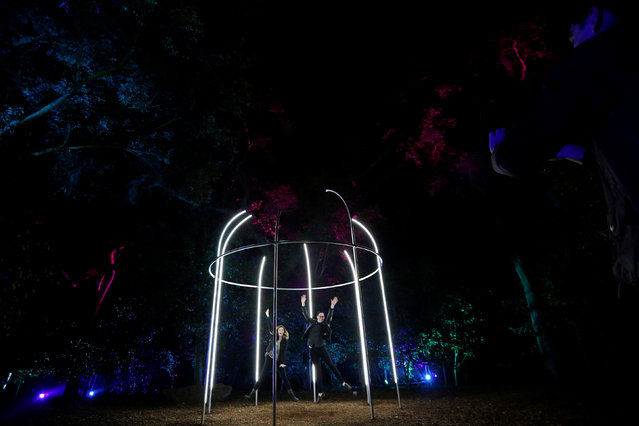 "Visitors Derek Chisamore and Marisa O'Toole jump inside an installation inside ""Fantasy Forest"" which is part of the exhibit ""Enchanted: Forest of Light"" at Descanso Gardens in La Canada Flintridge, California U.S., December 9, 2016. (Photo by Mario Anzuoni/Reuters)"