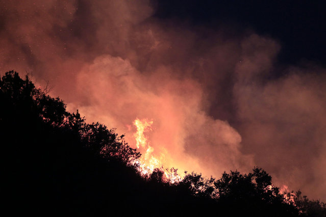 A forest fire burns out of contril in Valparaiso, Chile, Saturday, March 14, 2015. A serious forest fire spread quickly on Chile's coast Friday and threatened to reach the nearby port cities of Valparaiso and Vina del Mar. (Photo by Luis Hidalgo/AP Photo)