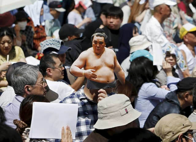 "A visitor holds a cutout of Mongolia-born grand sumo champion Yokozuna Harumafuji during the annual ""Honozumo"" ceremonial sumo tournament dedicated to the Yasukuni Shrine in Tokyo, Japan, April 18, 2016. (Photo by Yuya Shino/Reuters)"