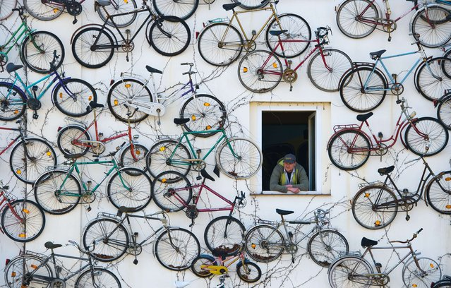 Pet Horstmann, head of the Fahrradhof bike shop in Altlandsberg, eastern Germany, looks out of his house decorated with 210 old bikes, on March 11, 2014. Inside, the shop offers more than 1,000 new bikes for sale. (Photo by Patrick Pleul/AFP Photo/DPA)