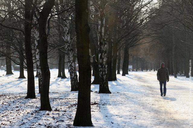 A man walks through the snow-covered Tiergarten