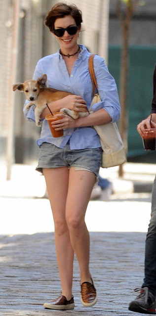 Anne Hathaway and husband Adam Shulman have added to their family, on June 15, 2014. They have adopted a new puppy. Anne and Adam take their new puppy and dog Esmerelda for a walk in their neighborhood to do some shopping. Anne was all smiles and seemed very happy with her family. (Photo by Ken Katz/Startraksphoto.com)