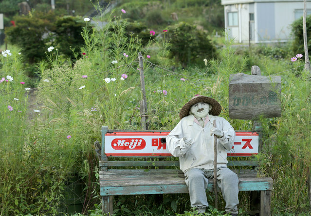 An illustration showing a scarecrow sitting on bench beside a road at Kakashi no Sato, or the Scarecrow's Hometown on September 10, 2014 in Himeji, Japan. (Photo by Buddhika Weerasinghe/Getty Images)