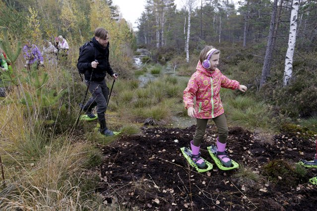 People wearing snowshoes take part in a tour of the Great Kemeri Bog, Latvia, October 17, 2015. The Kemeri bog is more than 8,000 years old and is one of the largest dry moss swamps in the Baltics. A more than decade-long joint restoration of the bog by the European Union and the Latvian government helped the bog recover its high moss marshes, damp black alder forests, floodplain meadows and seaside lakes – features now considered rare in Europe due to industrialisation. (Photo by Ints Kalnins/Reuters)