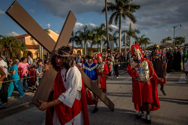 Vega carries the cross as Roman guardsman whip the cross. Hundreds of solemn believers watched and participated in a Passion Play – the dramatic depiction of the Passion of Jesus Christ: his trial, suffering and death – presented on Good Friday by members of St. Juliana Catholic Church in West Palm Beach. (Photo by Thomas Cordy/The Palm Beach Post)