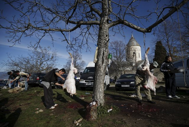 People carve sacrificial sheep in front of a church during St. George's Day celebration in the village of Ikalto, Georgia, November 23, 2015. (Photo by David Mdzinarishvili/Reuters)