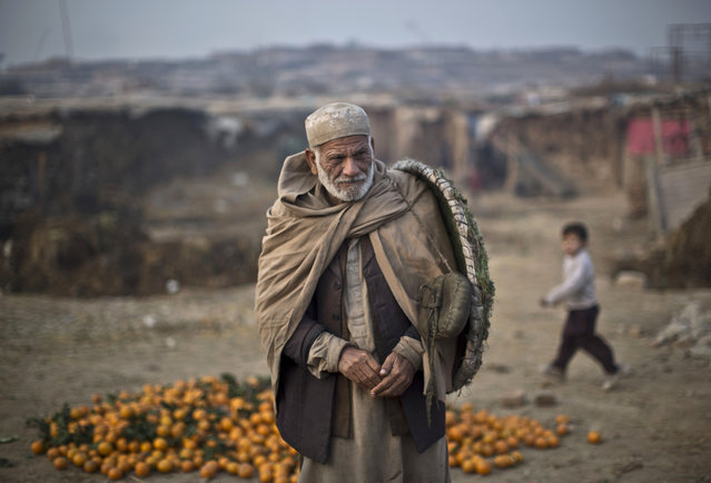 An Afghan refugee who works as a porter at a wholesale fruit an vegetable market walks to his work on the outskirts of Islamabad, Pakistan, Monday, January 5, 2015. (Photo by Muhammed Muheisen/AP Photo)